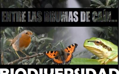 Retransmisión del documental y coloquio con Carlos de Prada y Elvira Heras